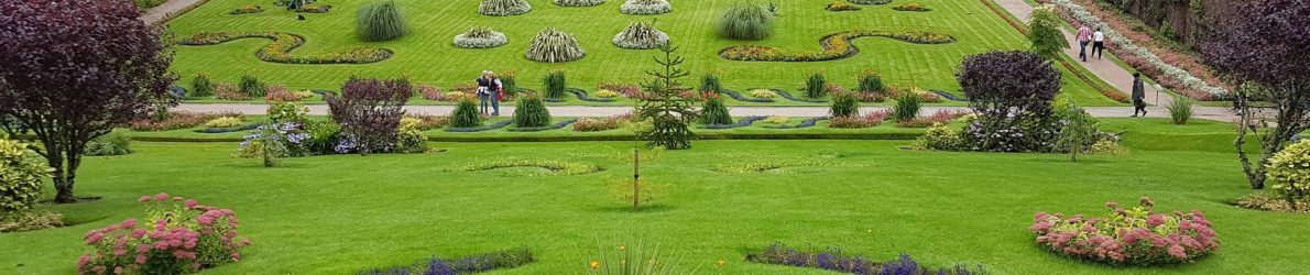 Sligo Gardening Contractors